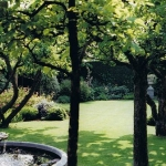 18 years garden maintenance in London