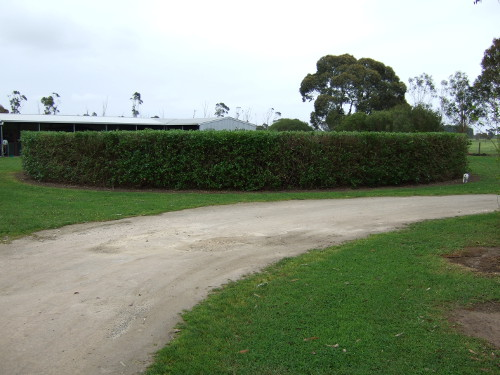 Hedge prepared for auction house