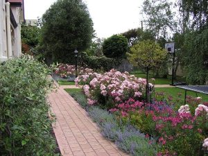 A garden maintained by Calary Gardens Mount Gambier