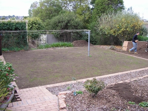 New garden layout from Calary Gardens