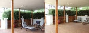 Calary Gardens hedge
