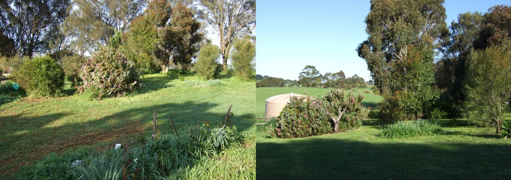 Gardening work before and after in Mt Gambier